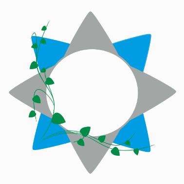 NaturaGIS logo