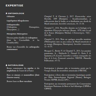 site web naturaliste indépendant Domaines d'expertise de Phytocoris