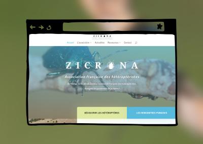 Présence en ligne de Zicrona